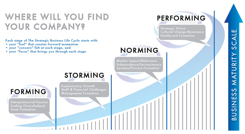 Where do you find your company in the strategic buysiness growth lifecycle?