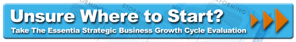 Take the essentia strategic business cycle growth evaluation today!